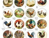 Custom order for Seth Rooster and Hen Barnyard Flatback Button 1 inch set of 24