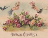 Birthday Greetings- 1900s Antique Postcard- Embossed Art Roses- Birds and Flowers- Edwardian Floral- Paper Ephemera- Used