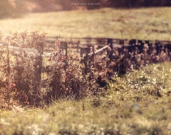 Country Landscape, Rustic Farmhouse Decor, Rustic Fence Print or Canvas Wrap, Sepia, Brown, Beige Landscape, Farm Photography.