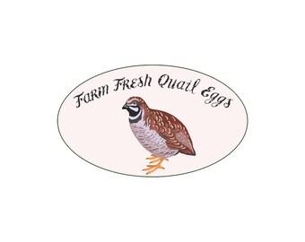 Round Farm Fresh Quail Eggs Glossy Egg Carton Labels Set of 30