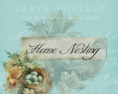etsy banner, nest, aqua blue eggs, rustic antique post card six piece etsy shop design