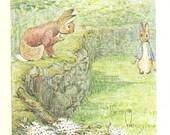 Beatrix Potter - MR.TOD Book Plate 26