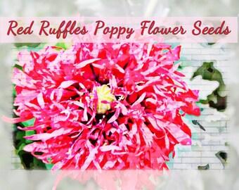 Red Ruffles Poppy Flower Seeds