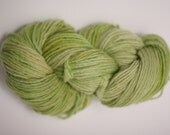 Single Ply sp Worsted Yarn  Hand dyed Merino Wsp12005 Dill Green