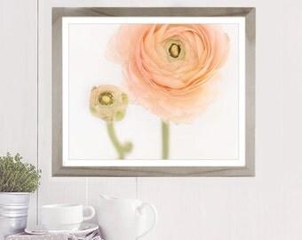 Pastel Flower print, flower photography, wall decor, home decor, ranunculus, cottage decor, floral art, cottage chic, fine art print, peach