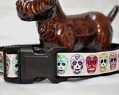 Dog Collar - Sugar Skulls -   50% Profits to Dog Rescue