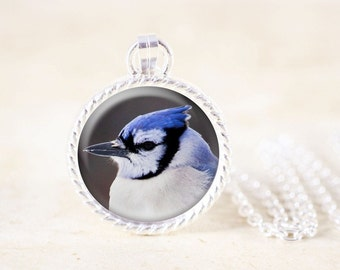Blue Jay Necklace - Silver Bird Jewelry Pendant, Blue Jay Pendant, Silver Bird Necklace, Wild Bird Pendant, Blue Jay Photo Jewelry Necklace