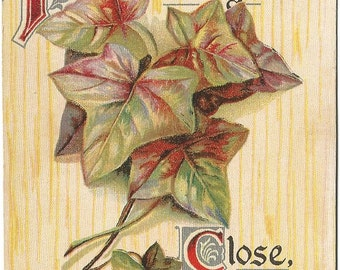 Yellow Wood grain Background with Ivy Leaves and Stems Friendship Vintage Postcard