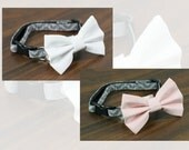 Cat Collar - Gray Chevron - Pink or White Bow Tie and Flower Available