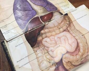 Antique medical book modern medical counsler medical oddities book