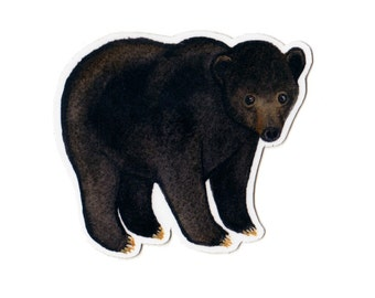 Black Bear Wildlife Magnet / Nature Art / Refrigerator Magnet / Office Magnet / Party Favor / Small Gift