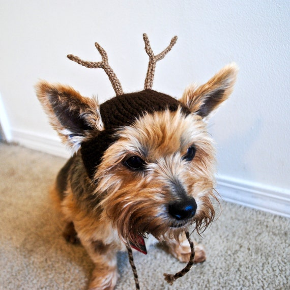 Knitting Pattern For Dog Reindeer Hat : Reindeer Costume for Dogs Hand Knit Dog Hat Custom Sizing