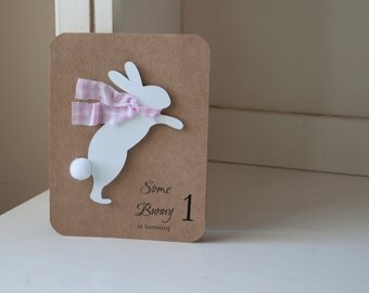 Snow Bunny Rabbit Invitations Winter Themed Birthday Party Baby Shower Girl Pink Gingham