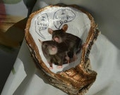 In A Half Oyster Shell, Rats That Love Together Stay Together.