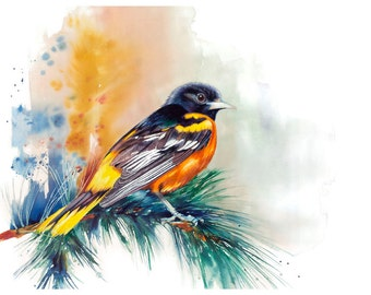 "5x7"" Baltimore Oriole Bird Watercolor Giclee Fine Art Print [Watercolor Bird Portrait Print, Oriole Print, Oriole Bird Art, Watercolor Art]"