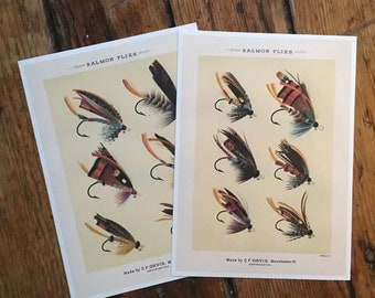 SALMON FLY TYING prints - glorious fly fishing bait prints - flies set of two prints of fishing tackle - orvis fly fishing prints