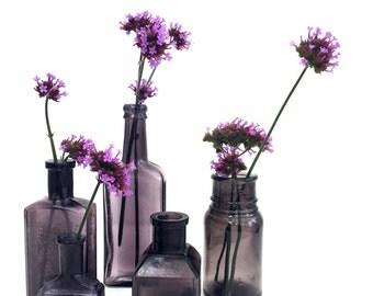 Set of 5 garnet glass vintage medical bottles