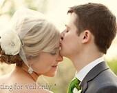 Tulle Birdcage Veil, Vintage Style Short Wedding Veil, Ivory White Bridal veil