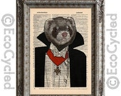 SALE Vampire Ferret on Vintage Upcycled Dictionary Art Print Book Art Print Recycled Dracula