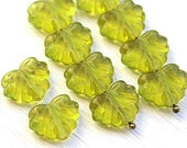 Czech glass leaf beads - Olivine, light olive green - Maple leaves - 11x13mm - 10Pc - 0949