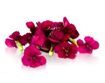 100 + Organic, MINIATURE DIANTHUS, Dark Pink, Edible Flowers, Bulk, Karma Orchids, Borage, Wedding Cakes, Large Orders Only