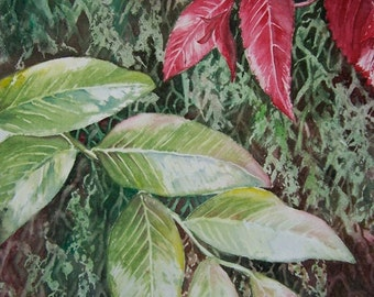 Tropical Foliage Original Watercolour Painting