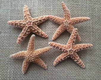 Starfish Boutonnieres, Starfish Pin, Men's Boutonnieres, Beach boutonnieres, Beach wedding, Beach Wedding Boutonnieres, Nautical Boutonniere