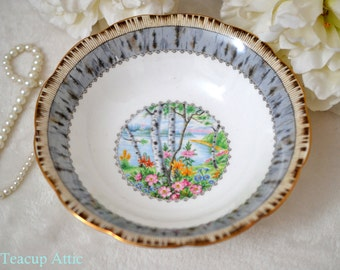 Royal Albert Silver Birch Coupe Cereal Bowl, English Bone China Bowl, Replacement China, ca. 1960-1970