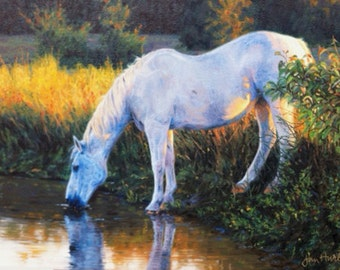 ORIGINAL Oil Painting on Canvas / Evening Sun is Setting Low / Ranch Horse