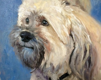 Mike's little Havanese, Commissioned  pet portrait oil painting