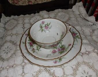 Lower PriceVintage Haviland Limoges Sylvia Porcelain Teacup Saucer & Salad Plate France Pink Roses