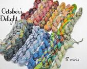 October's Delight - 17 Mini Sock Skeins, 12 yds each, 204 yds total