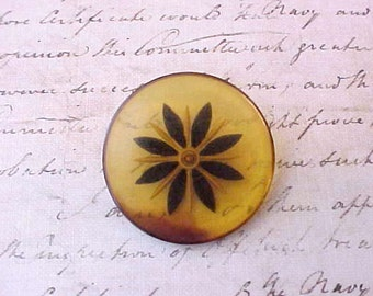 Pretty Large Vintage Carved Celluloid Button with Black Star Flower Design