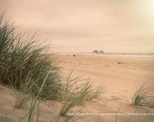 Beach Photography | Pink | Oregon Coast | Seagrass | Travel Photo | Peaceful | Ocean | Sea | Rockaway Beach