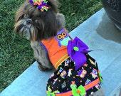 HALLOWEEN:  Owl DOG DRESS