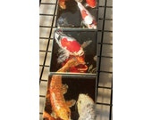 Magnet Set Koi  5.25 in x 1.75 in