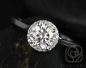 Rosados Box Amerie 6.50mm 14kt White Gold Round F1- Moissanite and Diamonds Halo Engagement Ring