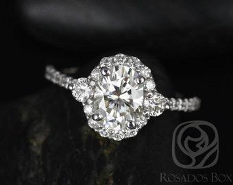 Rosados Box Bridgette 8x6mm 14kt White Gold Oval F1- Moissanite and Diamonds Halo Engagement Ring