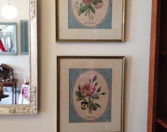 Vintage pink and green botanical framed prints roses flowers pancy prints shabby chic pictures by herminas cottage