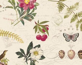 Fat Quarter Botanical Notebook 100% Cotton Quilting Fabric Flowers, Birds, Eggs