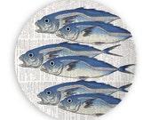 Fish II no.2, 6 Fish melamine plate