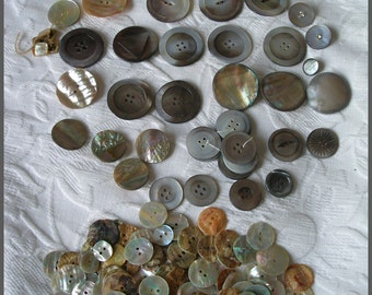Vintage Mother Of Pearl Button Lot 200+