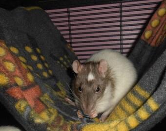 Dr. Who Dalek Rat Hammock