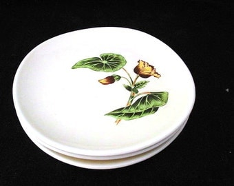 Berkley Sun Lure Bread Plates by Crooksville with Begonias Vintage 1950s SET of 3