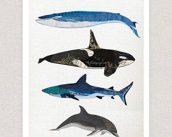 Marine Life Art Print - whales and sharks - Collage Art Illustration Home Decor Print