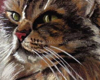 Maine Coon Cat Painting - cat painting, cat portrait, Maine Coon Cat, cat art print, cat aceo, cat gift, cat art