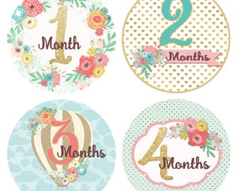 Baby Month Milestone Stickers Month by Month Stickers Monthly Sticker Girl Baby Shower Gift Baby Accessories Glitter Floral Balloon BMST045