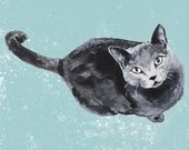 russian blue cat Etsy  illustration for the wall