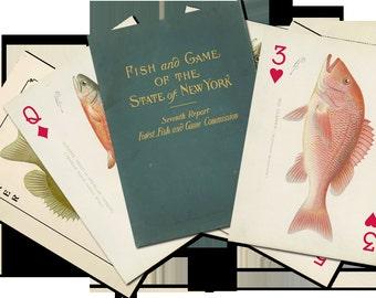 SF Denton Game Fish of New York Art Card Deck