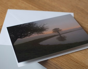Three trees - a moonlit, long exposure landscape. Fine art photography greetings card. Blank inside.